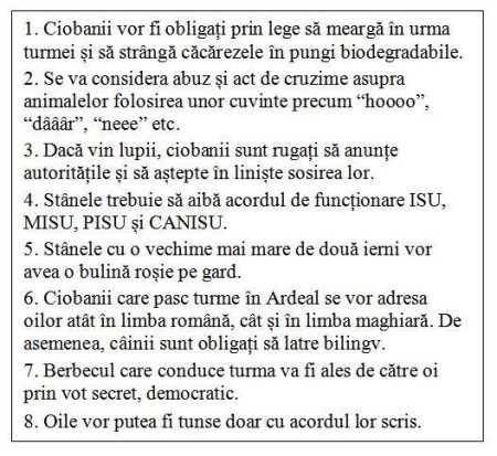 Duminicala romaneasca: Ciobanul